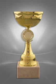 Cupe Sportive CE 21