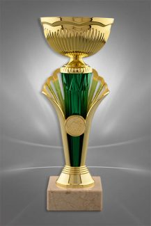 Cupe Sportive CE 24
