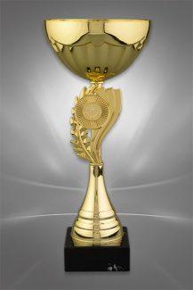 Cupe Sportive CS 54