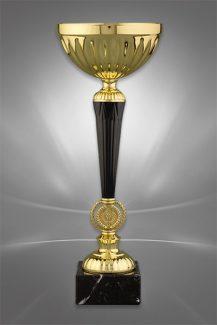 Cupe Sportive CS 99