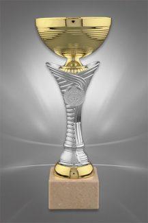 Cupe Sportive CE 01
