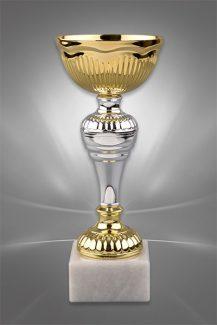 Cupe Sportive CE 02