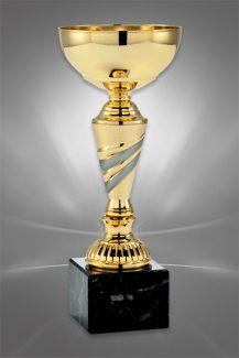 Cupe Sportive CE 04