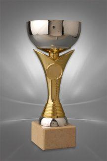 Cupe Sportive CE 06