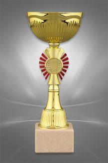 Cupe Sportive CE 07