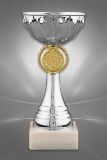 Cupe Sportive CE 09