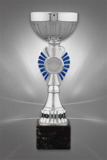 Cupe Sportive CE 11