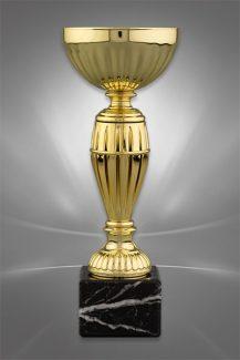 Cupe Sportive CE 16