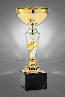 Cupe Sportive CE 26