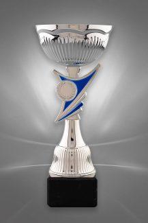 Cupe Sportive CE 31