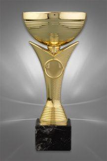 Cupe Sportive CE 32