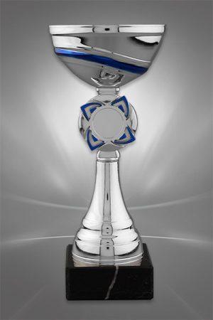 Cupe Sportive CE 36