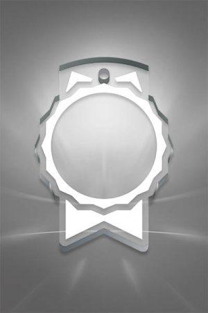 Medalii din Acril AMD 02