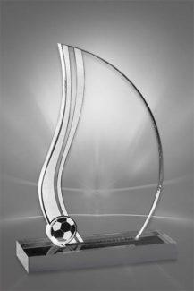 Trofee din Acril PSW 114