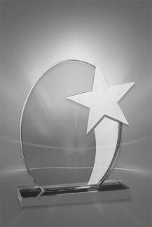 Trofee din Acril PSW 115