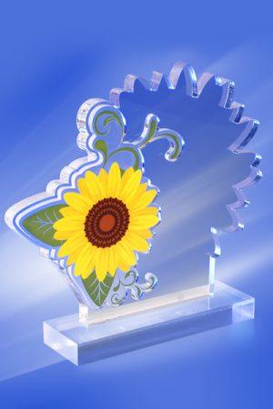 Trofee Personalizate TU 31