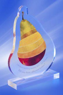 Trofee Personalizate TU 34