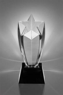 Trofee din Cristal CR 07