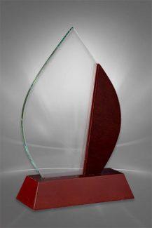 Trofee din Lemn WT 105