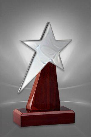 Trofee din Lemn WT 111
