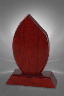 Trofee din Lemn WT 163