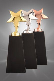 Trofee din metal MT 101