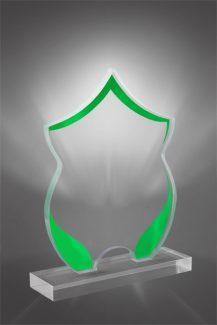 Trofee din Acril PSW 406