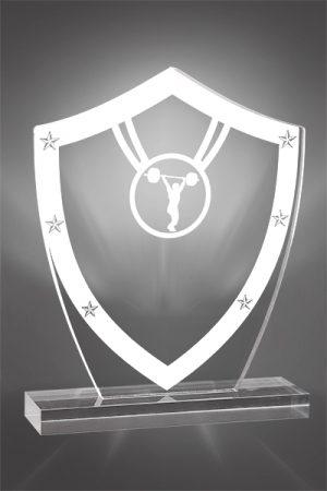 Trofee Creatie PSW 123